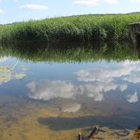 река Потудань у села Солдатское Острогожского р-на