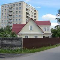 Красное Село, частный сектор, ул. Моховая