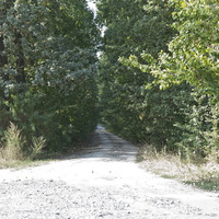 дорога у парк