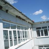 Ласточкины гнёзда под крышей школы