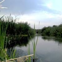 Природа села Архангельское