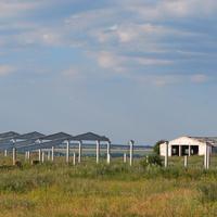 Скелеты сельского хозяйства России (село Озёрки)