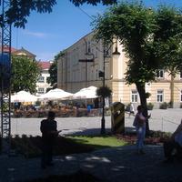 Швейки біля ратуші