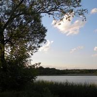 Природа села Петровка