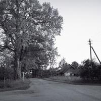 Crossroads and the grandpa's house / Скрыжаваньне і дзедава хата