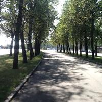 ул.Косыгина