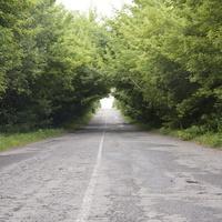 дорога на Семаки