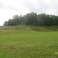 Кладбище у Труворова городища