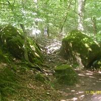 В окрестностях дольмена Волконского ущелья