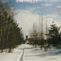 Дорога к храму в селе Шатур
