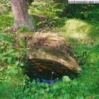 Лесной каменный родник за деревней Бундово. Глаз Земли
