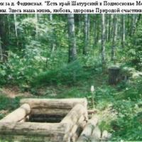 Лесной родник за деревней Фединская