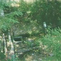 Родник у деревни Подлесная.  Фото 28 июля 1997г.