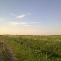 вид на поселок с полей