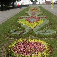 Цветник перед Успенским собором