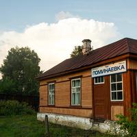 Разъезд Поминаевка 2009 г