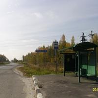 Дорожный указатель у деревни Тельма