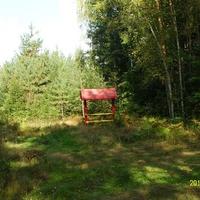 Скамейка с навесом для отдыха на лесном перекрёстке за Красными Лугами