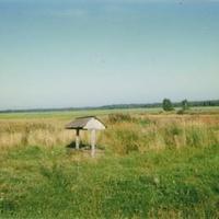 Родник у села Пустоша. Август 1997г.