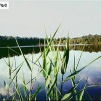 Озеро Соколье у бывшего посёлка  Соколья Грива. Вид с северо-запада. Сентябрь 1998г.