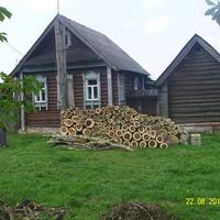 После обрезки деревьев в деревне Вершина
