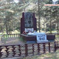 д.Любель.Памятник погибшим житеоям деревни в годы ВОВ.
