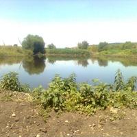 пруд рядом с фермой