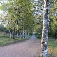 Аллея Славы в Полежаевском парке
