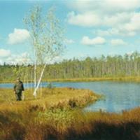 Озеро Лихое севернее п. Мишеронский