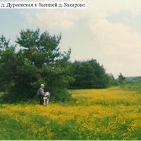 По дороге от деревни Дуреевская к бывшей деревне Захарово