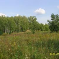 За околицей села Старый Покров