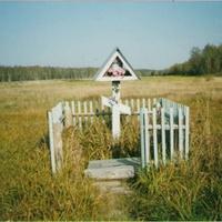 Родник Николая Угодника у деревни Заполицы. Сентябрь 2003г.