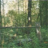 Родник Михаила Архангела около деревни Заполицы. Сентябрь 2003г.