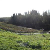 Святой источник на реке Воронежке