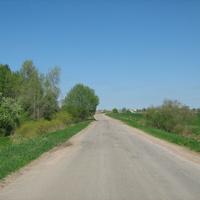 Вид на Трубников бор. Дорога на Лугу.