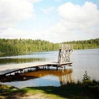 Озеро Сыльма у п. Радовицкий Мох