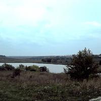 Природа села Курасовка