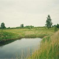 Пруд в Софряково