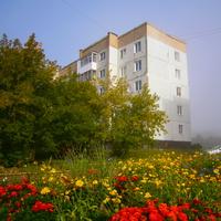 Туман, клумбы с цветами, машина, девятый дом