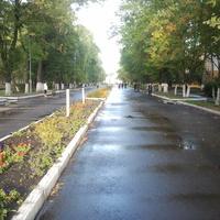 ул.Ленина - пешеходная