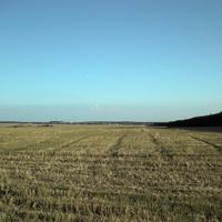 Природа села  Красная Поляна