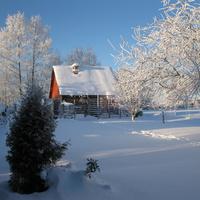 Валим зимой 2008 г.