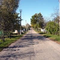 улица выходящая на Старо-Погостский тракт