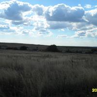 Вдалеке - Харевка