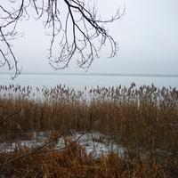 Зимняя мгла