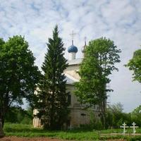 Деревья у церкви
