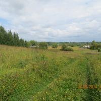 Дорога в деревню Харинскую
