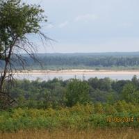здесь была деревня Коротовинская
