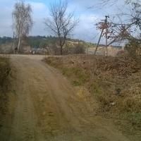Павловая улица