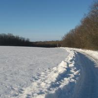 Дорога на Ситники